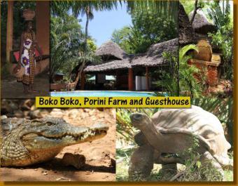 Boko Boko Bungalows