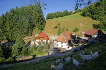 Steinm�hle