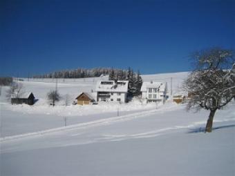 Haus Janssen-Wehrle