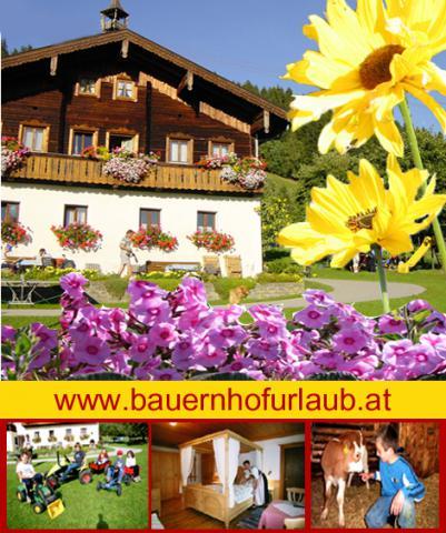 Apartamento de vacaciones Altenmarkt- Zauchensee Ambiente