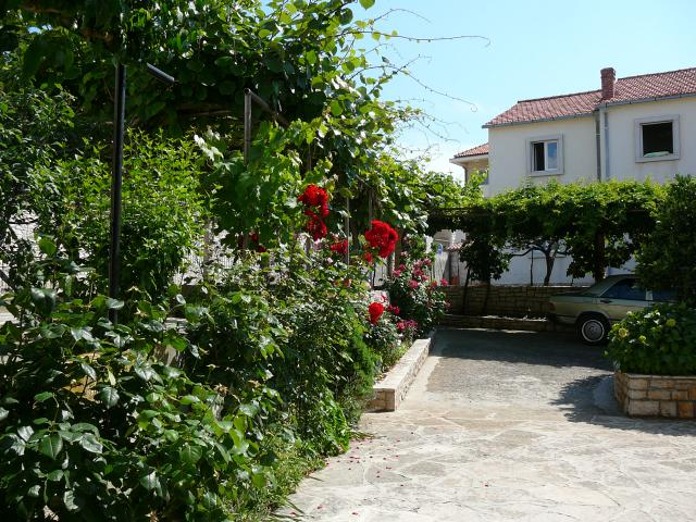 Vacation Apartment Supetar Surrounding