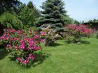 Gardening System