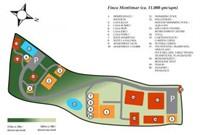 Fina Montimar-Colibri