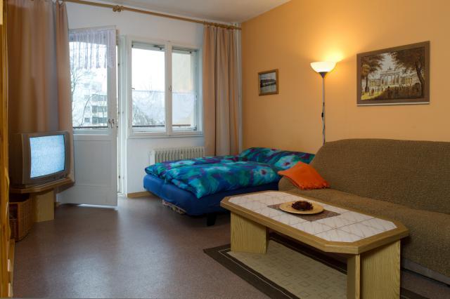 Vacation Apartment Berlin-Center Living Room