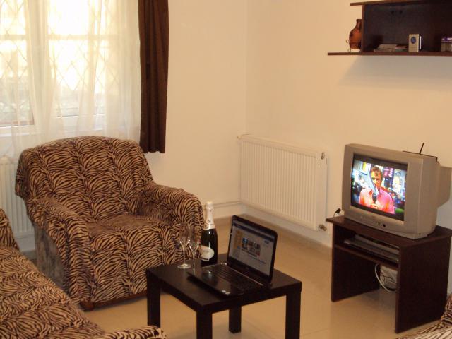 Εξοχικό διαμέρισμα Busteni Περιβάλλον