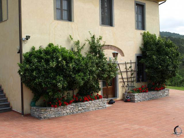Vacation Home Lucca Surrounding