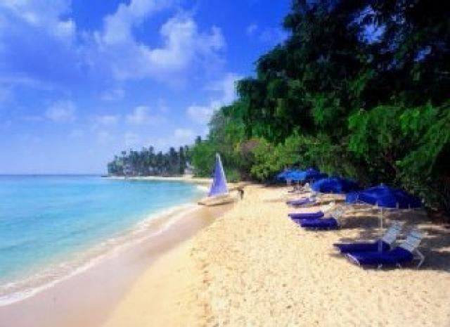 Apartamento de vacaciones Barbados Cocina