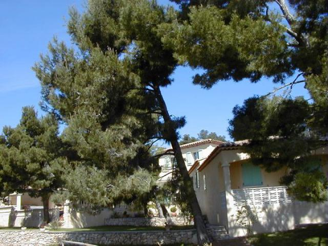 Gite-Holiday House MAUSSANE les Alpilles Rooms
