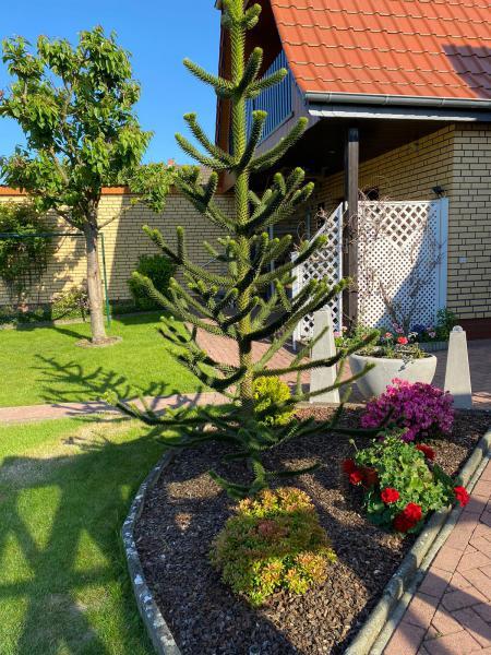 Ferienwohnung 639604 - Hausfoto 5