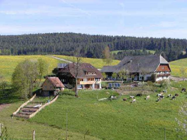 Vacation Apartment Schramberg-Tennenbronn
