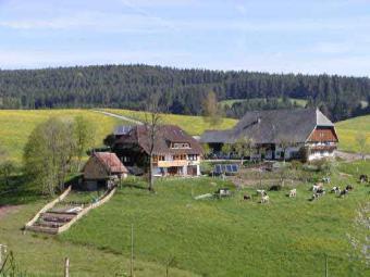 Mooshof - der Ferienhof