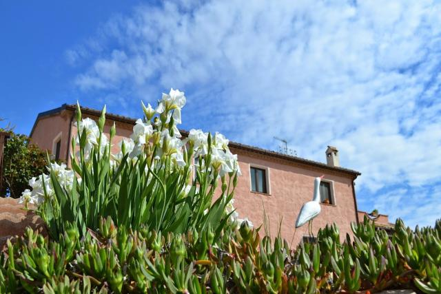 Bed & Breakfast osimo