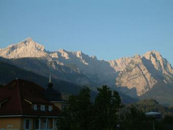 Almrausch in Garmisch