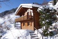Ski-in Ski-out Chalet