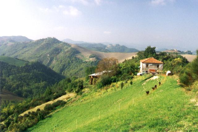 Chambre d'hôtes Sassocorvaro Environnement