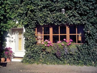 Ferienhaus Biebertal