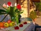 Villa Pietro Romano ap.Rustico - Vacation Apartment castel madama