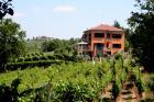 Villa I Due Padroni B&B - Apartman za odmor Montecalvo Versiggia