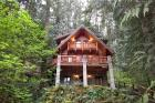 Snowline Cabin #47 - Vacation Home 98244