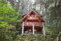 Snowline Cabin #47