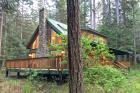 Snowline Cabin #78 - Vacation Home 98244