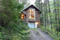 Snowline Cabin #25