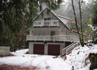 Snowline Cabin #24