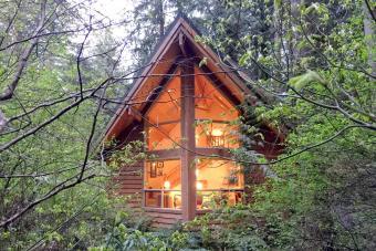 Snowline Cabin #4