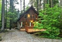 Snowline Cabin #35