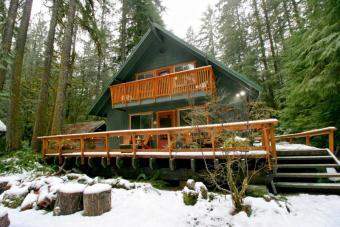 Snowline Cabin #9