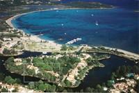 Ile de San Ciprianu-Mimosas